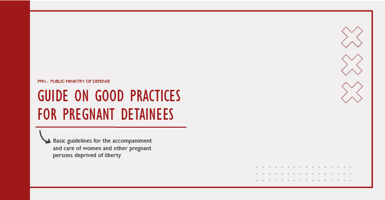 Guide on good practices for pregnant detainees